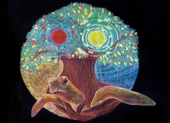 The World Turtle ; Creation Myth